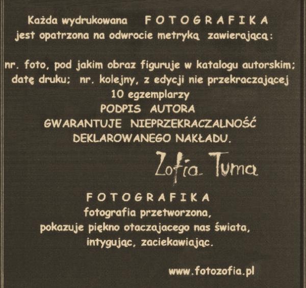 zofia.thun-info-600x564.jpg